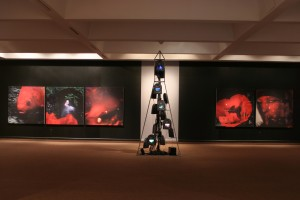 """Rewind"" Installation, Sir Wilfred Grenfell College Art Gallery, Corner Brook, Newfoundland, 2006"