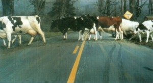 "William Beckman ""Crossing""  1983, oil on canvas, 90"" x 156"""